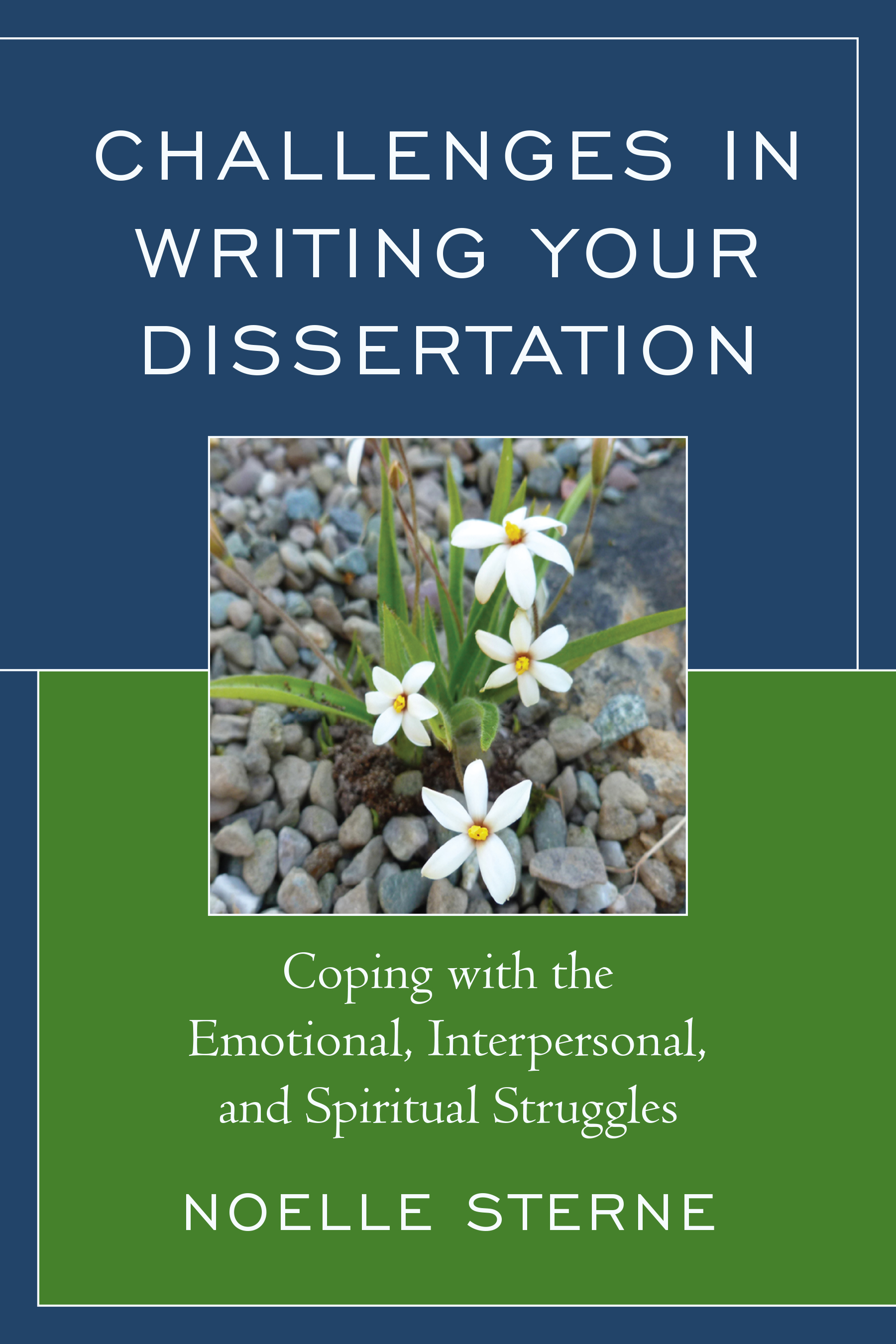 Help with dissertation writing books